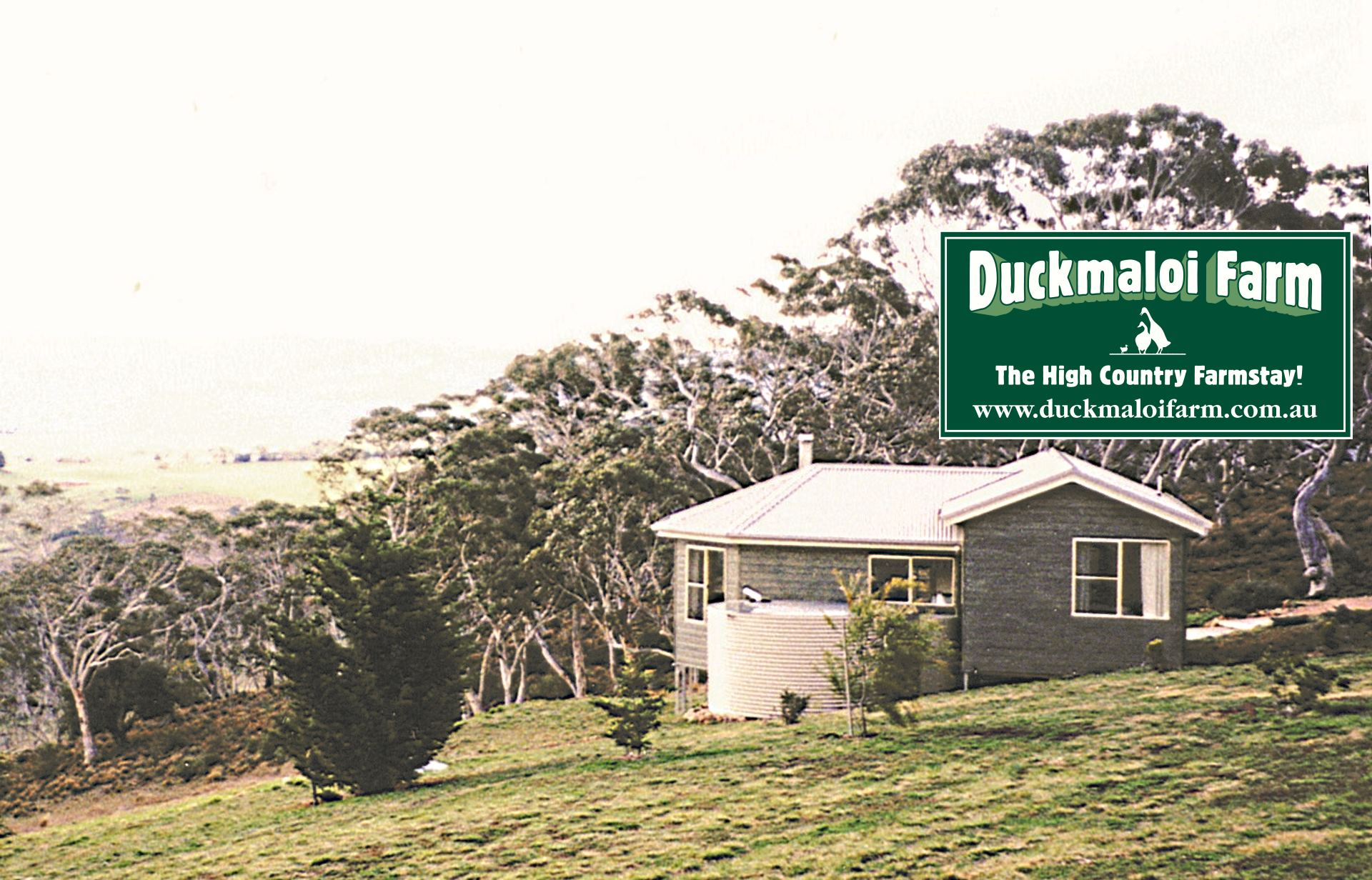 Duckmaloi Farm Experience Is Ideal For Young Families