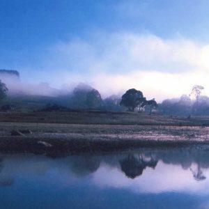 Discover- Misty Lake Oberon | Visit Oberon