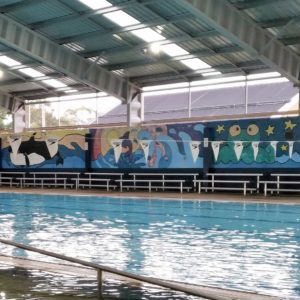 Discover - Swimming Pool | Visit Oberon