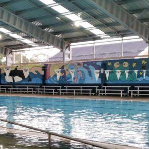 Discover - Swimming Pool | Visit Oberon