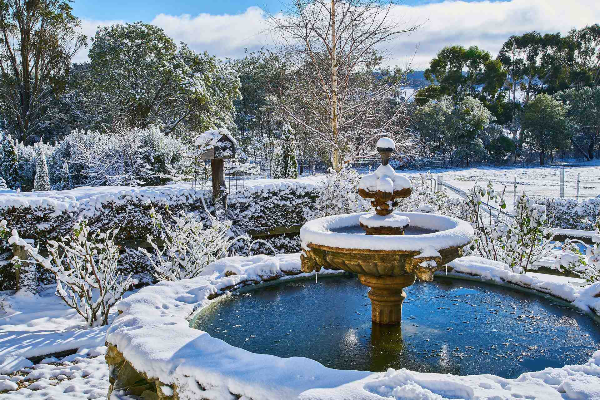 Snow In Oberon And Surrounding Areas